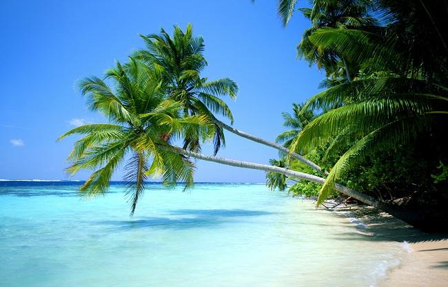Hawaii - Thiên đường du lịch thế giới