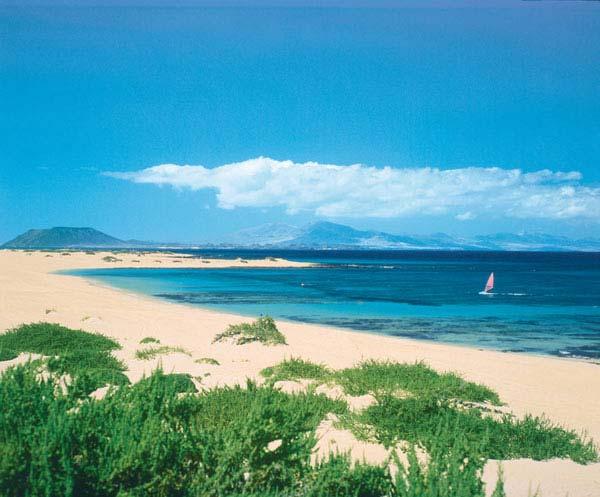 Fuerteventura hòn ngọc của Tây Ban Nha